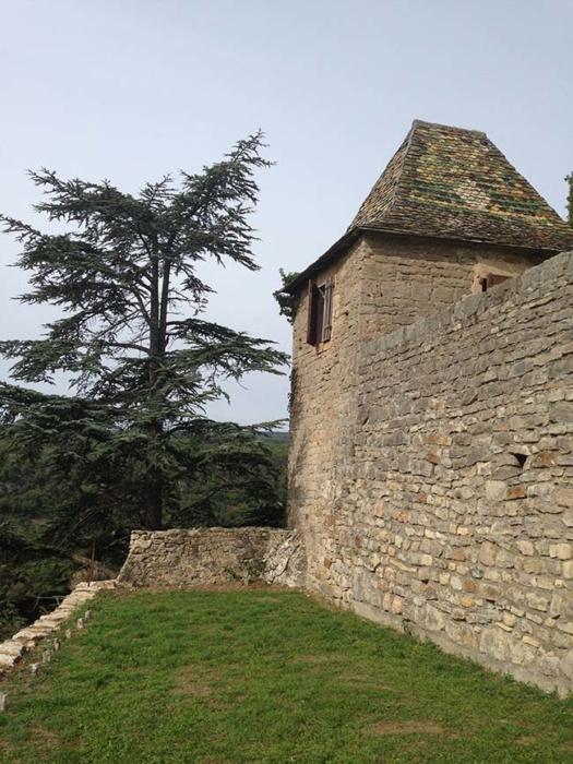 Photos château 37
